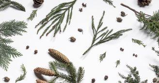 BeWooden - 5 rad jak letos prožít Vánoce opravdu v klidu
