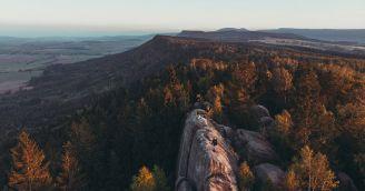 BeWooden - 10 důvodů, proč jsou lesy skutečným pokladem