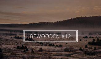 BeWooden - BeWooden Zpravodaj #12