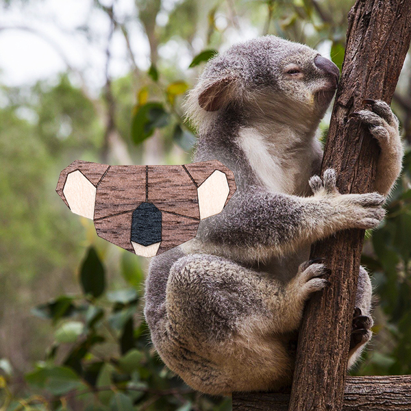 pomoc_koalam