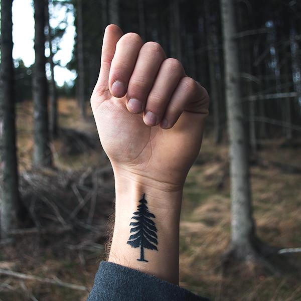 Muž v lese se stromem vytetovaným na předloktí