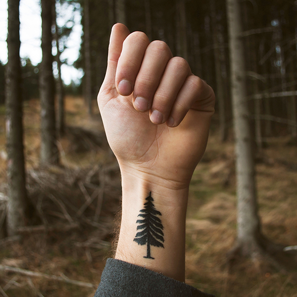 A male hand with a tattoo with a tree as a motive